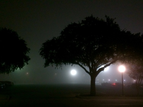 light's guidance in dense fog